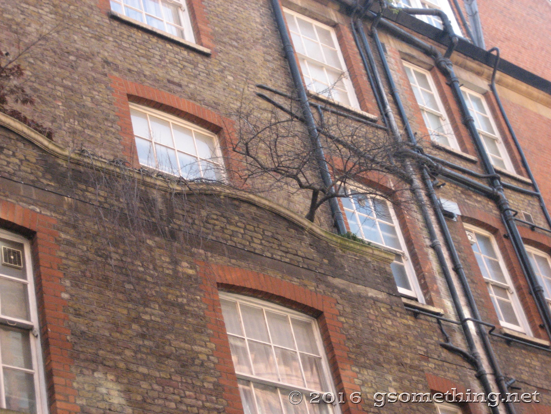 london_139.jpg